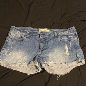Charlotte Ruse Shorts | Size 14